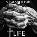 Day 31 - A ROSARY IS FOR LIFE